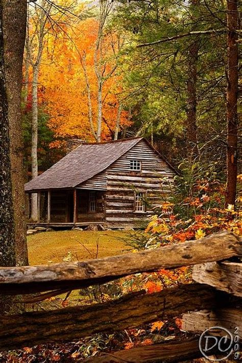 Great Smoky Mountain Cabins by Autumn In The Great Smoky Mountains Oasis The Great