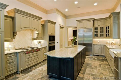 Grey Green Kitchen Cabinets Pictures Of Kitchens Traditional Green Kitchen Cabinets