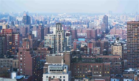 libro new york new york new york come le galapagos scoperta una nuova specie di rana wired