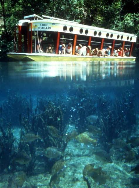 glass bottom boat tour orlando fl visitors aboard the quot chief coahajo quot glass bottom tour boat