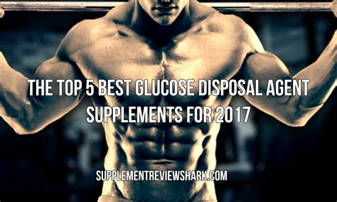 top 5 carbohydrates supplements the top 5 best glucose disposal supplements for 2017