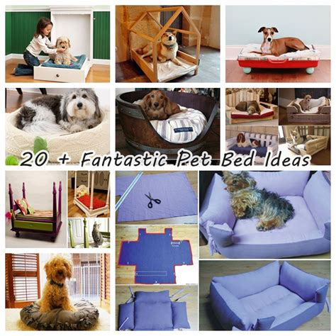 room d 233 cor that intergrates your dogs comforts 10 dog bed dog bed ideas 28 images room d 233 cor that