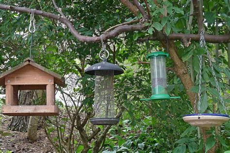 hanging bird feeders tips and tricks