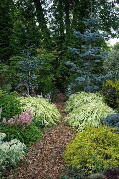 Conifer Garden Ideas Evergreen Landscaping Ideas Eternal Oases Houz Buzz