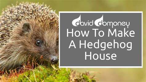 how to create a house looking after wildlife how to make a hedgehog house