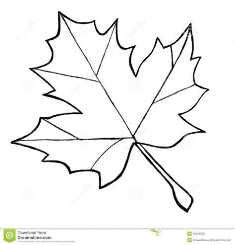 leaf pattern line drawing esbo 231 o da folha de pl 225 tano 13426506 jpg 1300 215 1353
