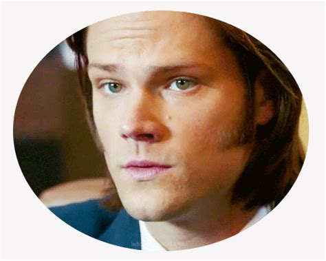 jared padalecki eye color jared padalecki s the evicted