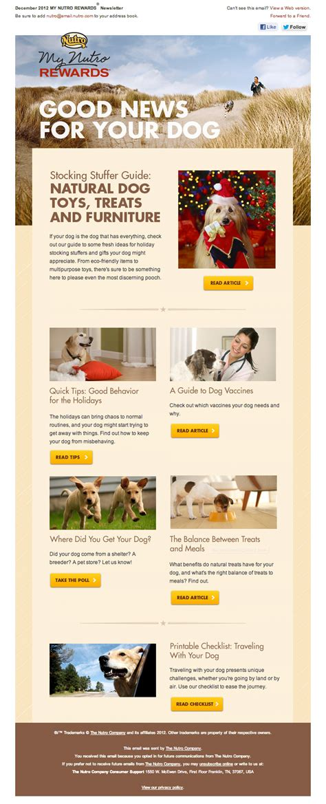 newsletter design inspiration pictures to pin on pinterest