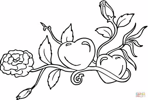 coloring pages of hearts and roses hearts and roses coloring page free printable coloring pages