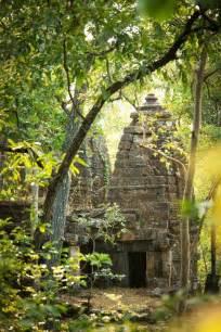 wild india step   real life jungle book