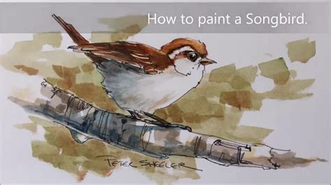 how to paint how to paint a bird sparrow demonstration a line and wash watercolor