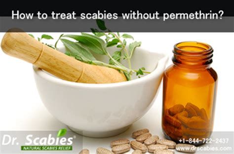 how to your without treats how to treat scabies without permethrin best scabies treatment dr scabies home