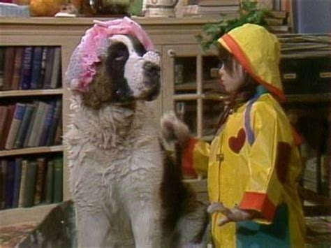punky brewster s dogs name 74 best images about punky brewster on kid family and photo cat