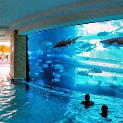 Aquarium Pool Table by So Cool Aquarium Pool House Yard