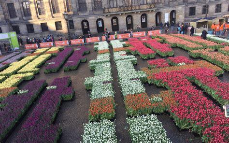 piazza di fiore piazza di fiori amici in fiore