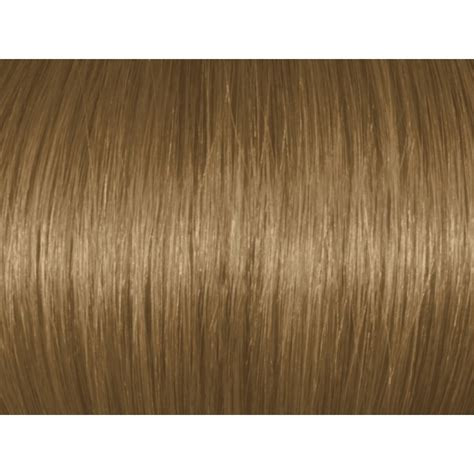 chesnut color chestnut 7br 7 7
