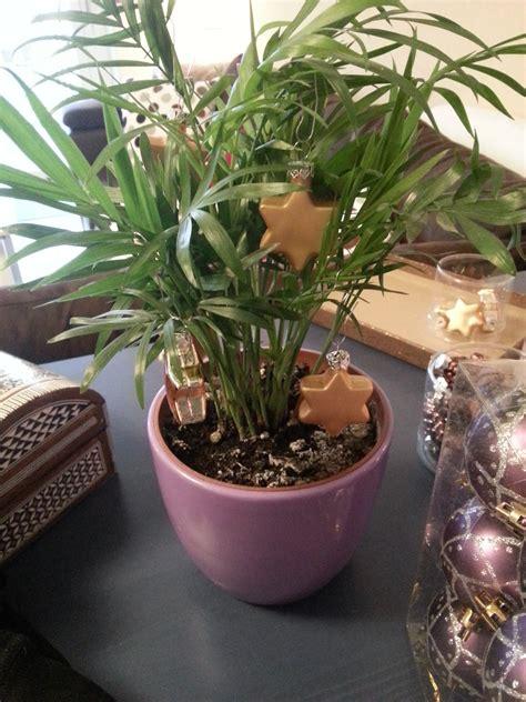 ascii weihnachtsbaum unser etwas kleinerer weihnachtsbaum ascii ch