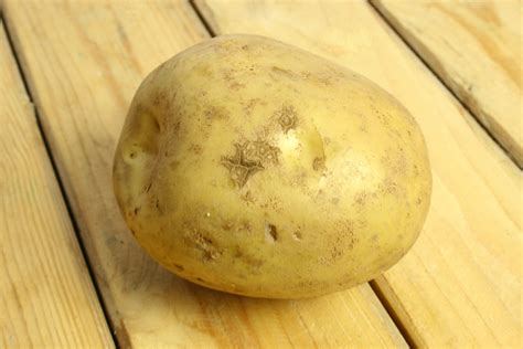 what is potato how to prevent potato scab 4 steps with pictures wikihow