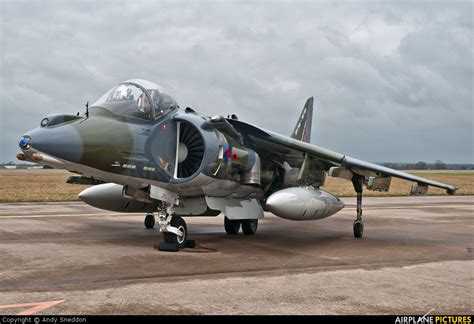 Section 2 Harrier by Zg506 Royal Air Aerospace Harrier Gr 9 At