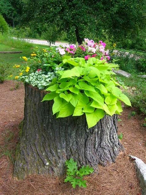 Tree Log Flower Planter by The 25 Best Ideas About Log Planter On