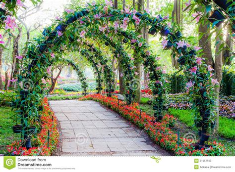 garten zierpflanze beautiful flower arches with walkway in ornamental plants