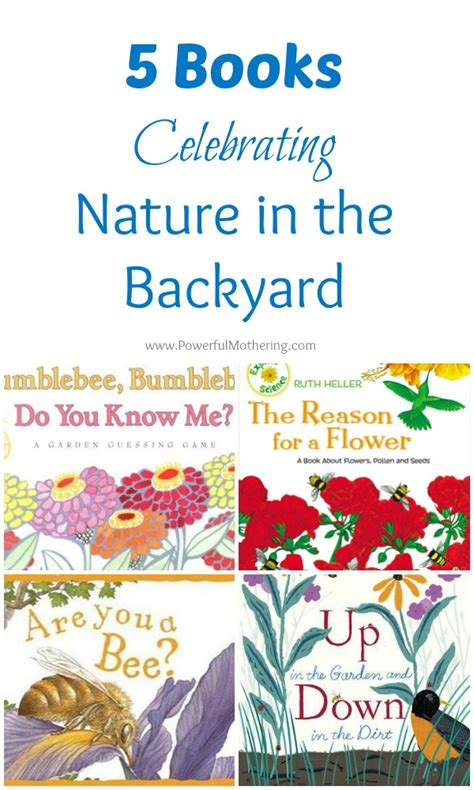 backyard books 5 books celebrating nature in the backyard backyard kid