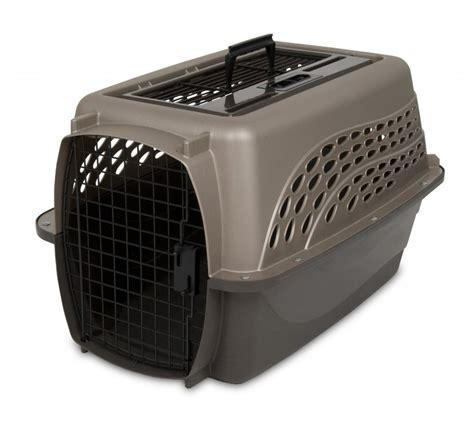 crate training crate training a puppy thirtysomethingsupermom