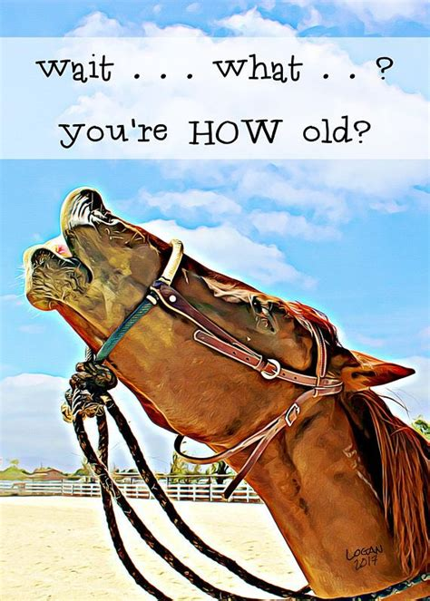 funny birthday card  friend  horse lovers laughing horse funny horse card