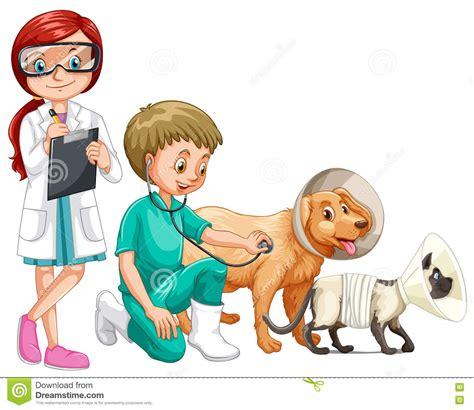 nunca dejes de so 241 ar mot 237 vate alegrate diviertete imagenes con frases para veterinarios imagenes dos