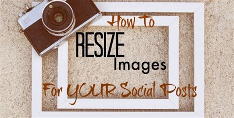 how many times do you feed a how to resize images for your social posts customized management solutionscustomized