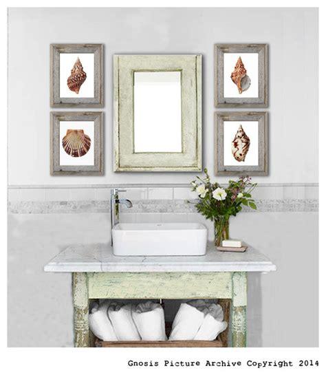 coastal themed home decor set of 4 sea shells theme home decor prints