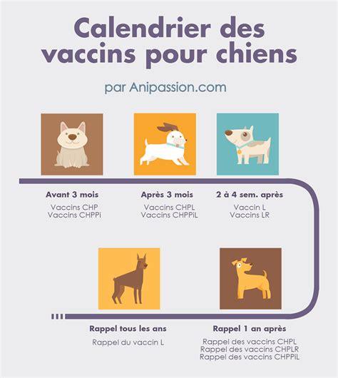 Calendrier Vaccin Prix Des Vaccins Pour Chien