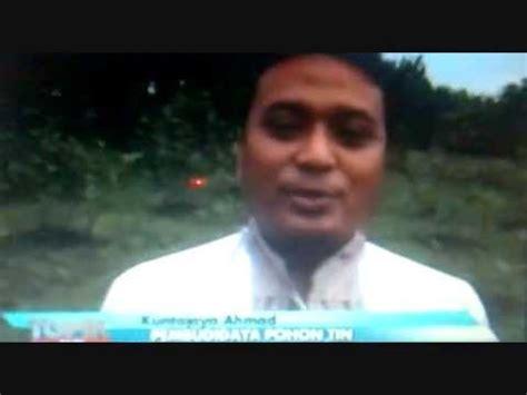 Jual Bibit Tin Gresik liputan an tv ke kebun budidaya buah tin indonesia di