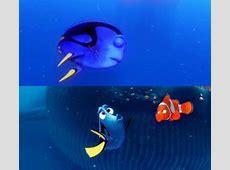 Jellyfish Nemo Quotes. QuotesGram Finding Nemo Quotes Dory