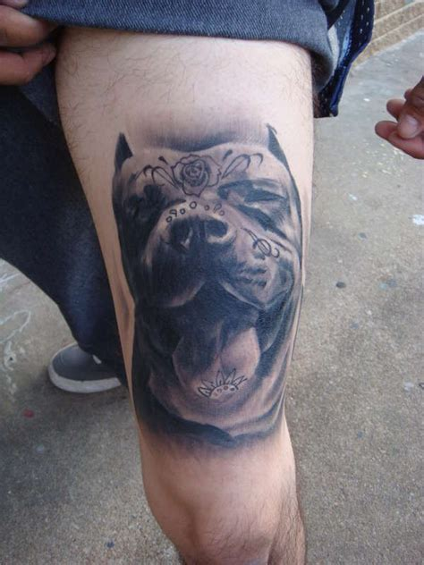 tattoos of pitbulls 60 awesome dangerous pitbull tattoos golfian