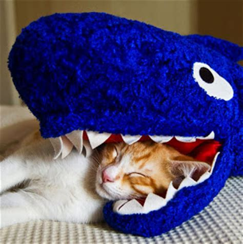 shark pillow that eats you devildinosaur classic geek is it bean bag shark week