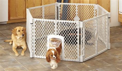 best dog crate bed mypet petyard passage review best dog crates and beds
