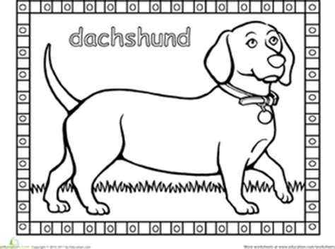coloring pages weenie dog dachshund worksheet education com