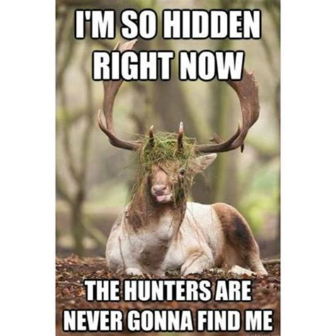 Meme Hunter - 10 best hunting memes