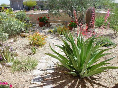 zero scape landscaping xeriscaping fresh decoration landscaping pinterest zero scape