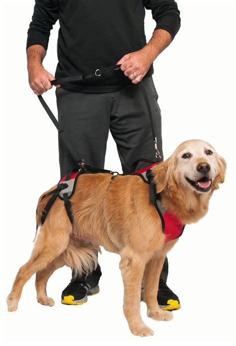 support harness t u s h the ultimate support harness for dogs topdoghealth