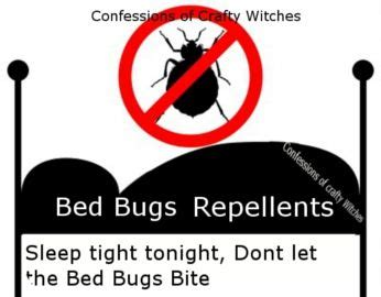 ideas  bed bugs treatment  pinterest bed bugs bug bite  treatment  bed bugs