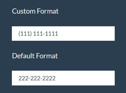 format number html input mask format user input in text fields jquery samask