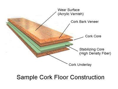 what is cork and where does it come from