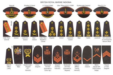 british royal marines insignia related keywords suggestions for marine ranks