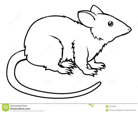 drawing free stylised rat illustration stock vector illustration of