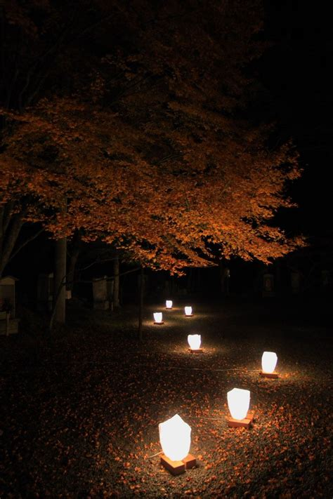 japanese garden outdoor lighting japanese garden lights mptfk exblog jp japanese garden