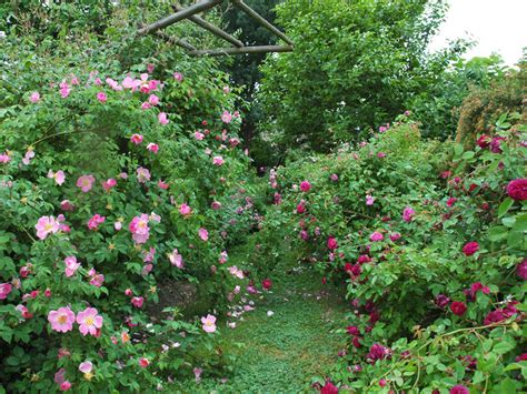beautiful gardens azee queen s park le jardin april 2018 https nemu win