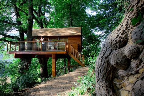 tiny tree house amazing treehouse cabin for rent in france tiny house