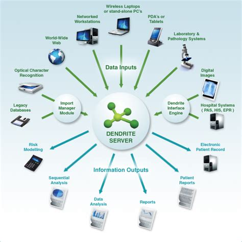 system diagram software welcome to dendrite clinical systems products services